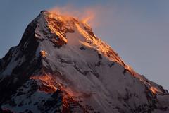Nepal, Annapurna (Dietmar Temps) Tags: nepal mountains trekking trek tour himalaya annapurnacircuit annapurna himalayas poonhill elevation70007500m mountainshimalaya annapurnasouth summitannapurnasouth goldstaraward spiritofphotography altitude7273m