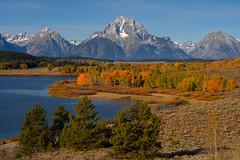 Oxbow Bend, this time a higher view (Dylan MacMaster) Tags: autumn mountains fall wyoming mountmoran grandtetonnationalpark oxbowbend