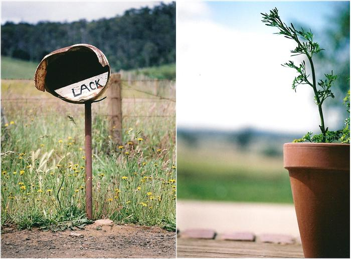 plant pot and letterbox