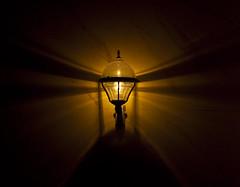 A very shiny lamp (Sina Farhat) Tags: winter light lamp photoshop canon göteborg vinter raw pattern darkness sweden gothenburg sigma round lampa sverige 28 rund 2009 30d domkyrkan cs4 ljus adobecameraraw onmywaytowork mönster västrahamngatan 2470 mörker påvägtilljobbet