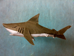 Origami Great White Shark (Syahmir) Tags: ocean sea white fish color shark marine origami great malaysia dou