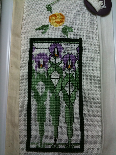 iris window garden progress 1-7-10