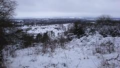 DSC04203 (edwardsgt) Tags: snow january tring 2010