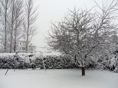 Obligatory Snow Photos
