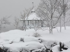 Coated in White (donsutherland1) Tags: winter snow ny newyork storm nature weather nieve snowstorm gazebo neige february blizzard summerhouse larchmont manorpark bej abigfave theunforgettablepictures goldstaraward saariysqualitypictures mothernaturesgreenearth