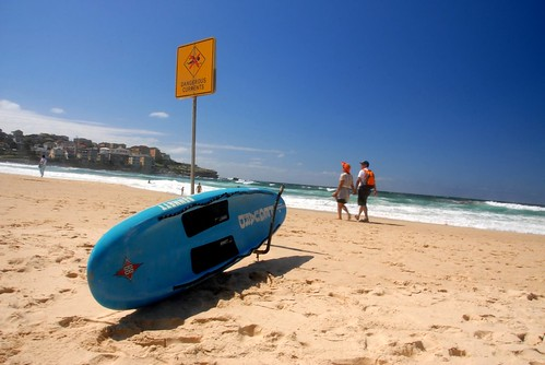 The Bondi Rescue lifeguards 2011