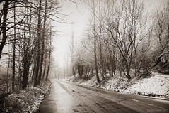 (andrewlee1967) Tags: road uk trees england snow cold sepia person britain walk gb ashtonunderlyne sigma1020mm andrewlee tameside mywinners andrewlee1967 canon50d