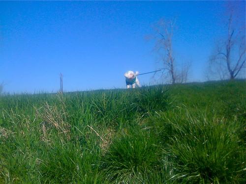 Wink likes adventures