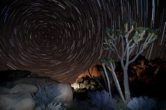 _88 frames (true2self) Tags: longexposure nightphotography joshuatree startrails northstar imagestacking