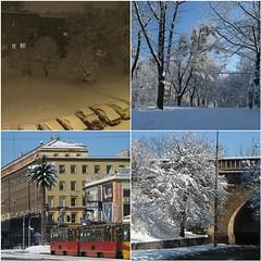 10 days ago (didiridi) Tags: blue winter sky snow palma zima warszawa nieg tramwaj niebo