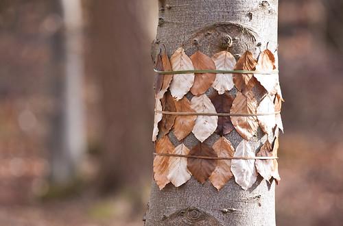 Brown Tree Leaves! by JRT Pickle