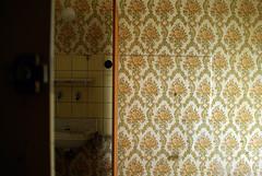 Reprage papier peint  fleur orange2 (karton_street_art) Tags: fleur vintage  exploration papier peint ancien abandonn rtro reprage friche