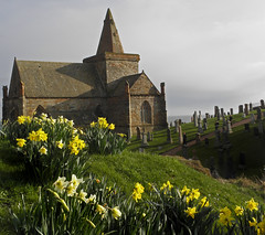 St Monan's Church Daffodils 2 (g crawford) Tags: flowers sky cloud flower church clouds scotland skies fife scottish daffodil daffodils crawford scots stmonans churchofscotland monans saintmonans