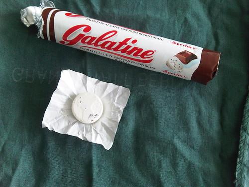 GalatineIMG01224-20100420-1120