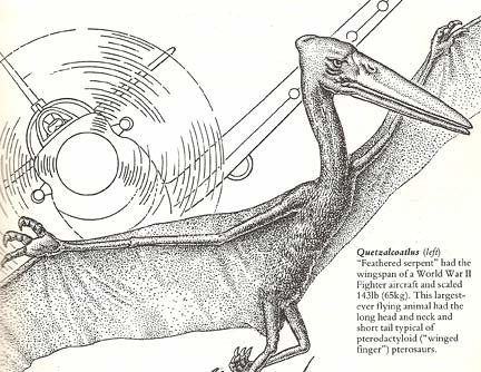 """The Dinosaur Data Book"" (1990) p. 23"