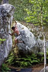 Cuvier Est: Festin de pierre (7a+) (f/4) Tags: france sport sandstone action boulder climbing font bouldering bloc fontainebleau grs escalade grimpe bleau 7a varappe festindepierre cuvierest