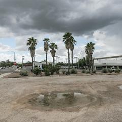 "Tucson's ""Badwater Pools"" landform reflects the treetops of ornamental street palms. (Tim Kiser) Tags: 2015 20151007 arecaceae arizona arizonalandscape broadwayboulevard eastbroadwayboulevard easthughesstreet hughesstreet img7927 northparkavenue october october2015 palmae parkavenue pieallen pieallenhistoricdistrict pieallenneighborhood pimacounty pimacountyarizona tucson tucsonarizona tucsonlandscape darkclouds gravel gravelparkinglot grayclouds landscape mostlycloudy mudpuddle ornamentalpalmtrees ornamentalpalms overcast palmtrees palms parking parkinglot parkinglotlandscape puddle southarizona southeastarizona southeasternarizona southernarizona stagnantwater standingwater streetpalms streettrees urbanlandscape view unitedstates"