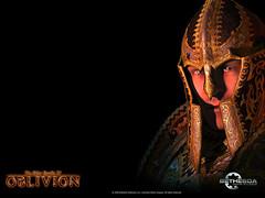 oblivion wallpaper 5