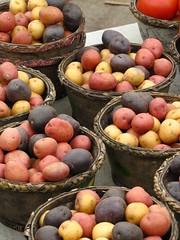 Mini Potatoes (Craig Stephen) Tags: ontario canada vegetables st canon market jacob country kitchener waterloo produce farmer sx20 poweshot