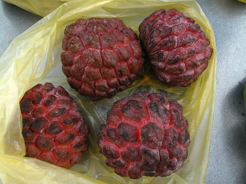 IMG_3865 Red Custard Apple , 红色番荔枝