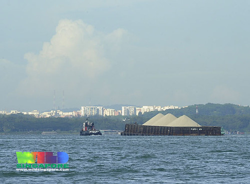 Sand barge off Pasir Ris