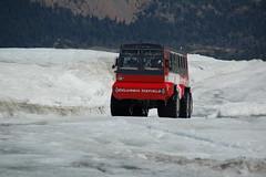 350 (Ayenne) Tags: athabasca canadianrockies iceexplorer