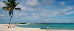 cove beach 2 (mingzkl) Tags: ocean blue sunshine island paradise panoramic palm atlantis bahamas nassau whitesand bahama covebeach nikkor28mmf28ais nikond90