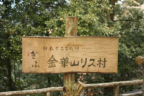 日本でここだけ