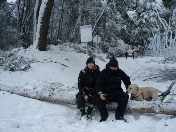 Milans main chef Katarina on municipal beach Lungomare. Observe the pine tree that has fallen under the weight of snow.
