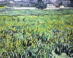 Vincent Van Gogh - House at Auvers at the Phillips Collection Art Gallery Washington, DC (mbell1975) Tags: usa house art museum painting us dc washington gallery phillips vincent collection impressionism van gogh impression impressionist auvers pfip