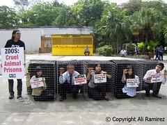 สวนสัตว์ คุกโหด Zoos: Cruel Prisons