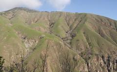 Hills Photo