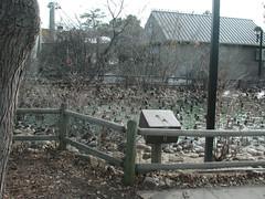 Zoo of Denver  DSCN0131_1