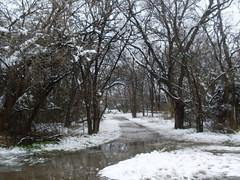 Troth Abion Park, Garland, Texas, February 12, 2010
