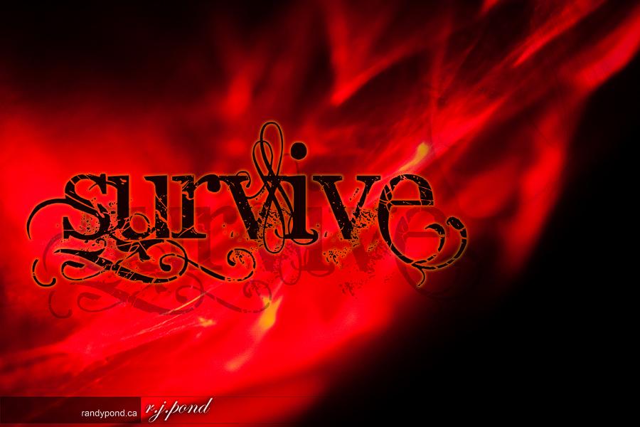 ~ 55/365 Survive ~