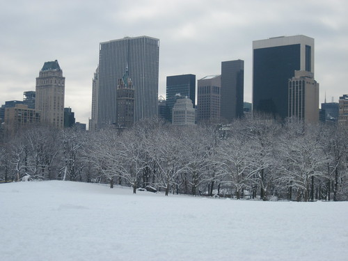 Sheep's Meadow After Snowfall