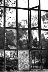 Broken view I (Maron) Tags: old bw white black broken window glass iron pattern view squares threes supermarion marionnesje