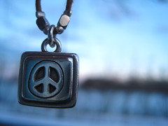(Caitlyn Gallagher) Tags: blue sunset macro love project necklace peace purple days beatles 365 365project