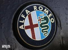 Freezing an Alfa Romeo (Luca Morlok) Tags: auto italy milan cold ice gelo car sport canon logo eos italia cross milano freeze gelato alfa icy alfaromeo macchina freddo 147 stemma croce ghiaccio visconti freezed fregio cuoresportivo congelato visconteo ghiacciato biscione 450d