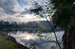 Almaden Lake on Misty Morning (donjd2) Tags: ca sky usa mist clouds sanjose hdr almadenlakepark almadenlake exposurefusion
