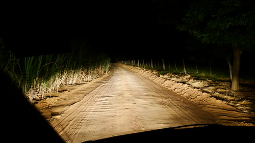 THE HAUNTED ROAD (by Marcelo Braga)