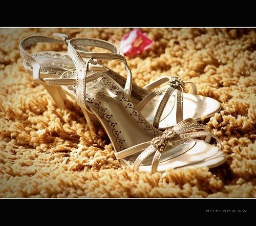 3 réflex y 1 compacta: Calçados - sandálias- sapato- zapato