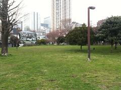 南青山の公園