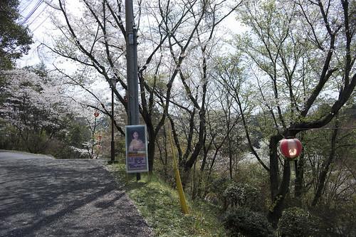 JC04.03.031 福岡県田川郡添田町 添田公園 M9 B28ZM#