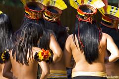 Yamurikum (Rita Barreto) Tags: etniakuikuro ndiadomatogrosso ndiadobrasil ndiadoxing yamurikum