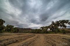 Weal Valley, Jazan, SA (mlahsah) Tags: valley sa ksa nikon nikond750 السعودية وادي صبيا جازان jazan ngc