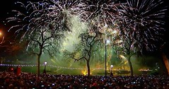 Crowds trees and fireworks (Eddie Crutchley) Tags: europe england london outdoor trees fireworks simplysuperb greatphotographers