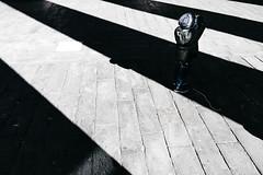 Zebra (FButzi) Tags: genova genoa teatro carlo felice colonnato columns italy italia child play street photography