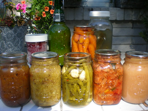 Preserving Group Shot 2009 (back row: serviceberry jam, fermented hot sauce, pickled carrots, dill pickles; front row: spicy nectarine chutney, spiced apples, beans and pearls, cottage garden pickle, pink applesauce; absent: tomato conserva)