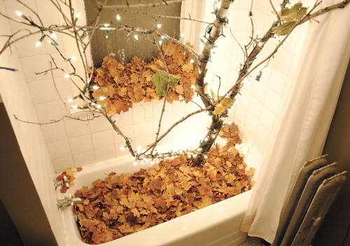 Mad Scientist's Aviary with Tree and Leaves Growing Through Bathtub